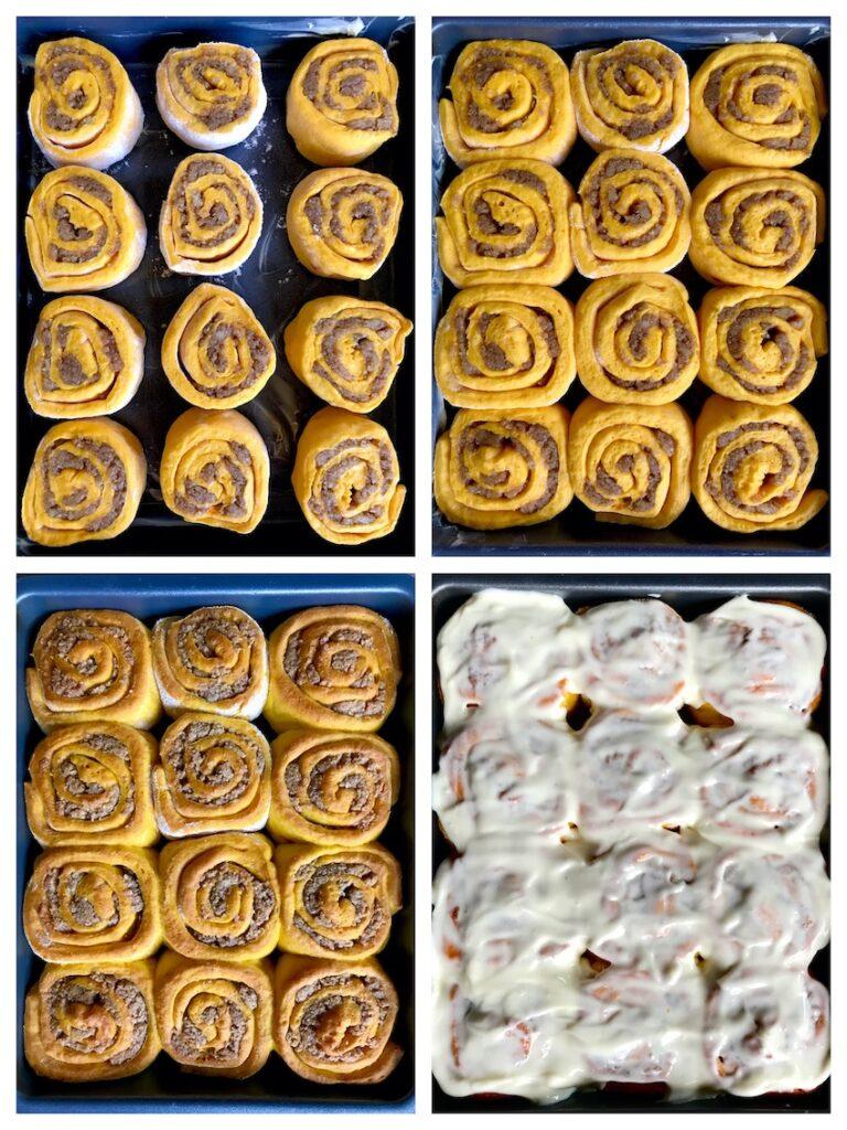 Kürbisschnecken Collage